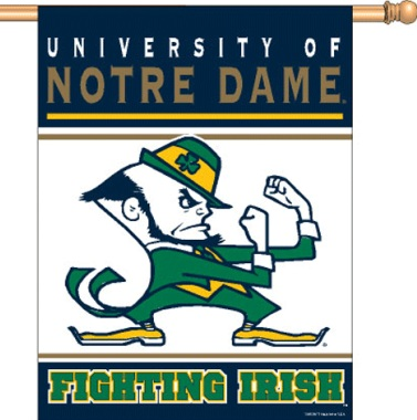 university notre dame fighting irish .